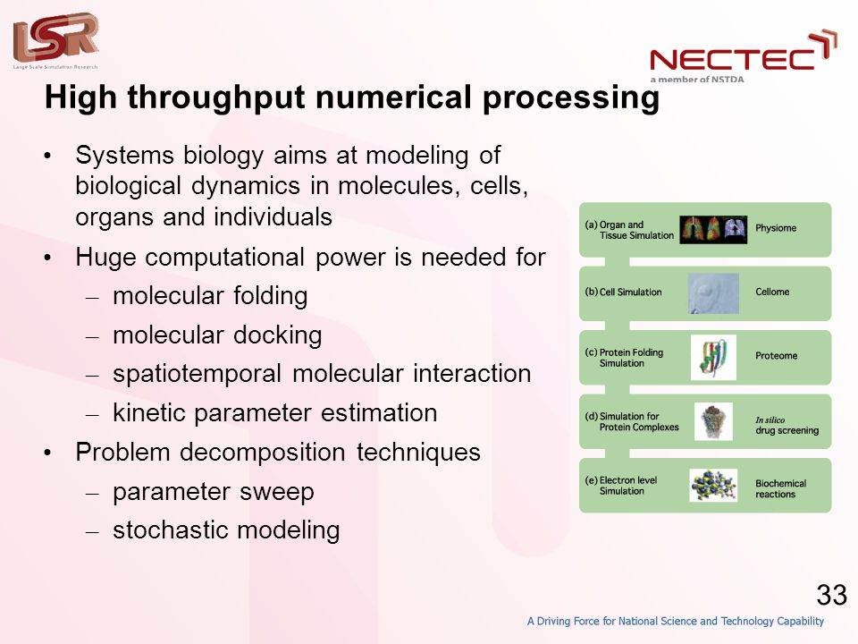 33 High throughput numerical processing • Systems biology aims at modeling of biological dynamics in molecules, cells, organs and individuals • Huge c