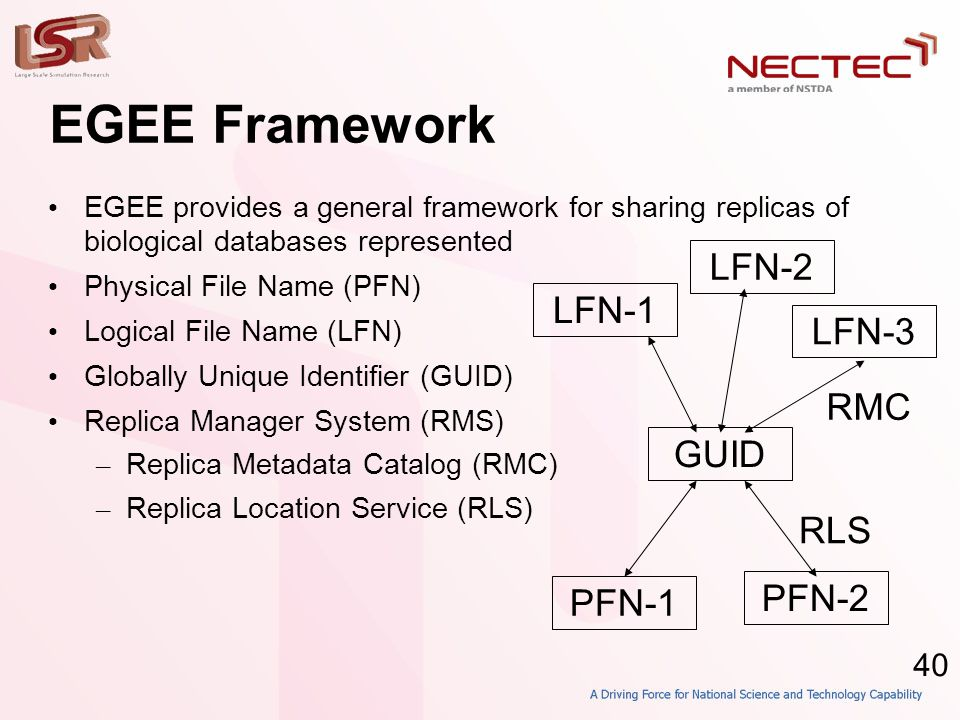 40 EGEE Framework • EGEE provides a general framework for sharing replicas of biological databases represented • Physical File Name (PFN)‏ • Logical F