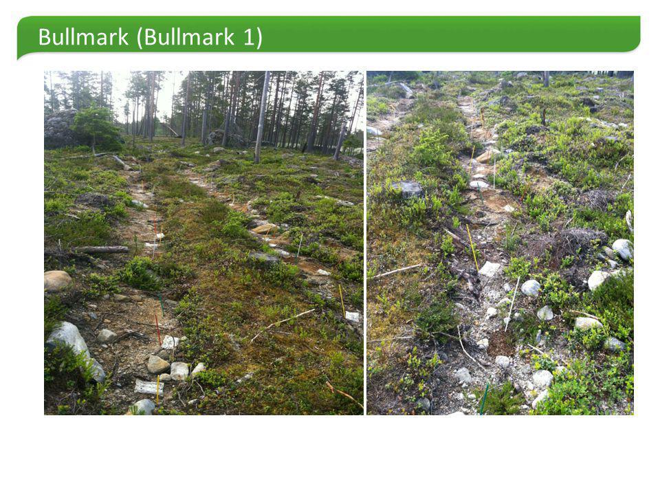 Bullmark (Bullmark 1)