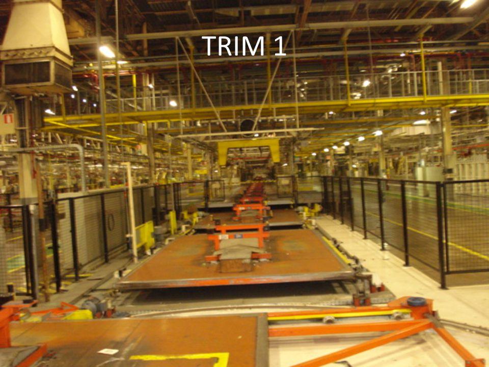 TRIM 1