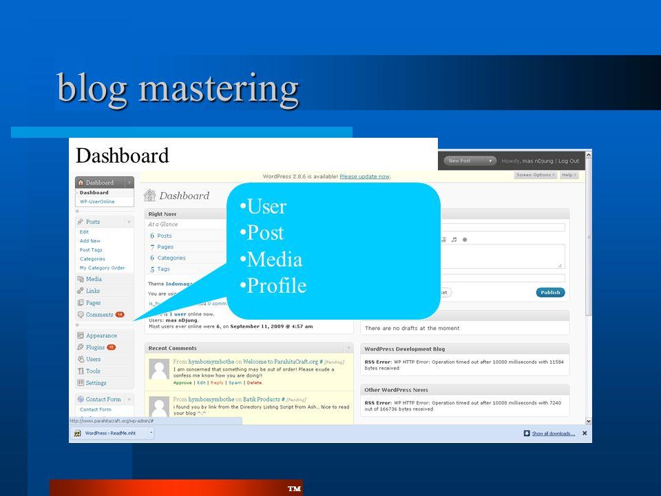 ™™ blog mastering Dashboard • User • Post • Media • Profile