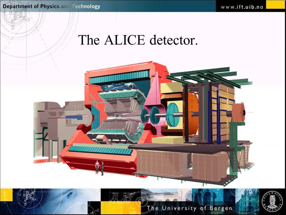The ALICE detector.