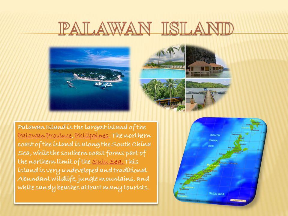 Palawan Island Palawan Island is the largest island of the Palawan Province, Philippines.