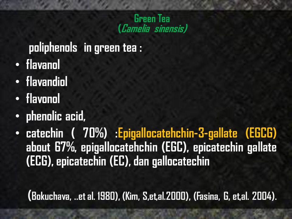 Green Tea (Camelia sinensis) poliphenols in green tea : • flavanol • flavandiol • flavonol • phenolic acid, • catechin ( 70%) :Epigallocatehchin-3-gallate (EGCG) about 67%, epigallocatehchin (EGC), epicatechin gallate (ECG), epicatechin (EC), dan gallocatechin ( Bokuchava,..et al.