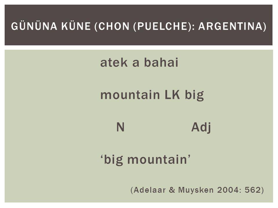 atek a bahai mountain LK big N Adj 'big mountain' (Adelaar & Muysken 2004: 562) GÜNÜNA KÜNE (CHON (PUELCHE): ARGENTINA)