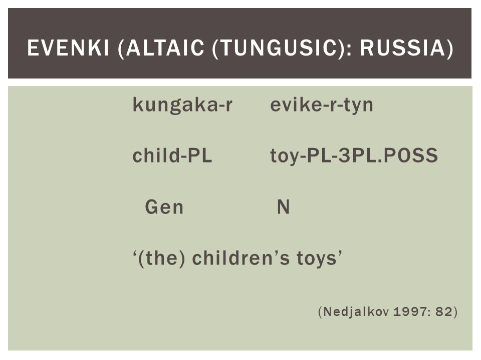 kungaka-r evike-r-tyn child-PL toy-PL-3PL.POSS Gen N '(the) children's toys' (Nedjalkov 1997: 82) EVENKI (ALTAIC (TUNGUSIC): RUSSIA)