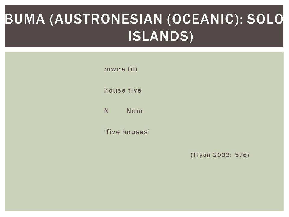 mwoe tili house five N Num 'five houses' (Tryon 2002: 576) BUMA (AUSTRONESIAN (OCEANIC): SOLOMON ISLANDS)