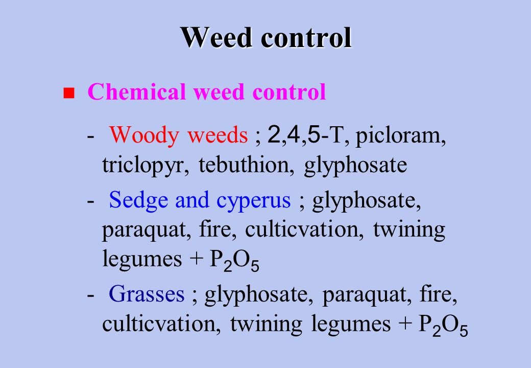 Weed control n Chemical weed control - Woody weeds ; 2,4,5-T, picloram, triclopyr, tebuthion, glyphosate - Sedge and cyperus ; glyphosate, paraquat, fire, culticvation, twining legumes + P 2 O 5 - Grasses ; glyphosate, paraquat, fire, culticvation, twining legumes + P 2 O 5
