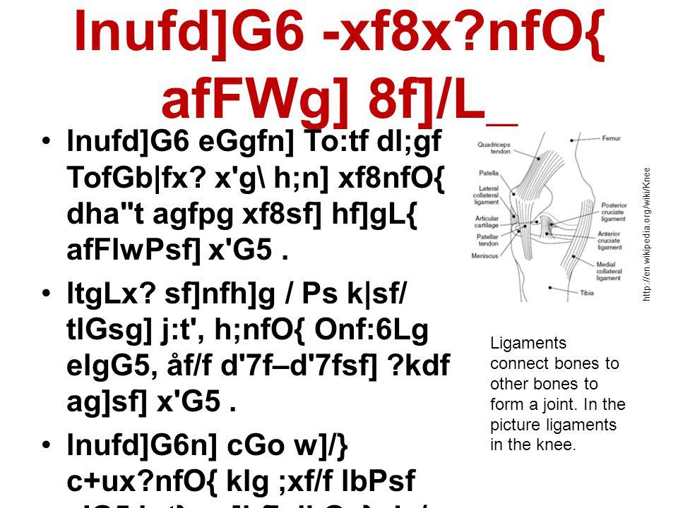 lnufd]G6 -xf8x nfO{ afFWg] 8f]/L_ •lnufd]G6 eGgfn] To:tf dl;gf TofGb|fx.