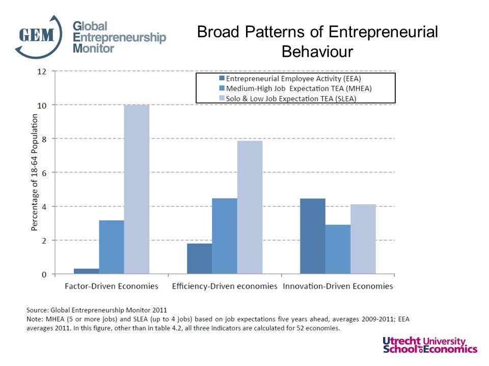 Broad Patterns of Entrepreneurial Behaviour