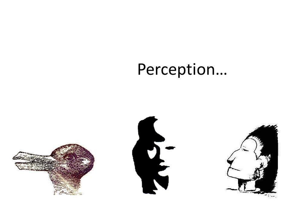Perception…