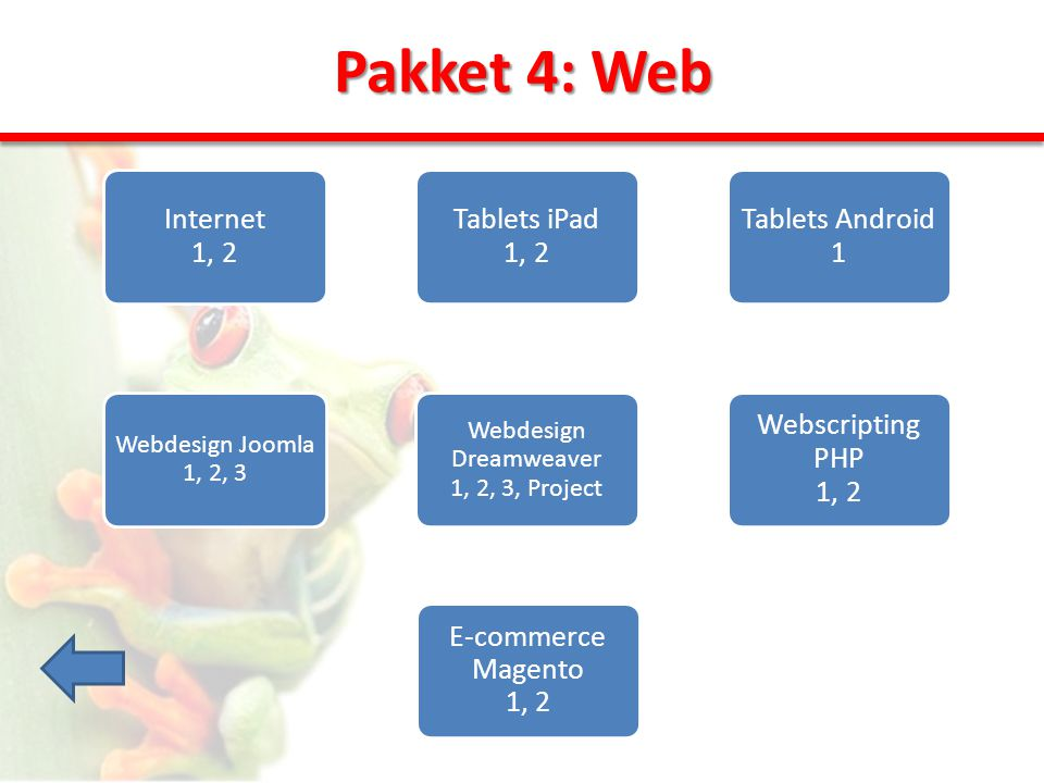 Pakket 4: Web Internet 1, 2 Tablets iPad 1, 2 Tablets Android 1 Webscripting PHP 1, 2 Webdesign Dreamweaver 1, 2, 3, Project Webdesign Joomla 1, 2, 3 E-commerce Magento 1, 2