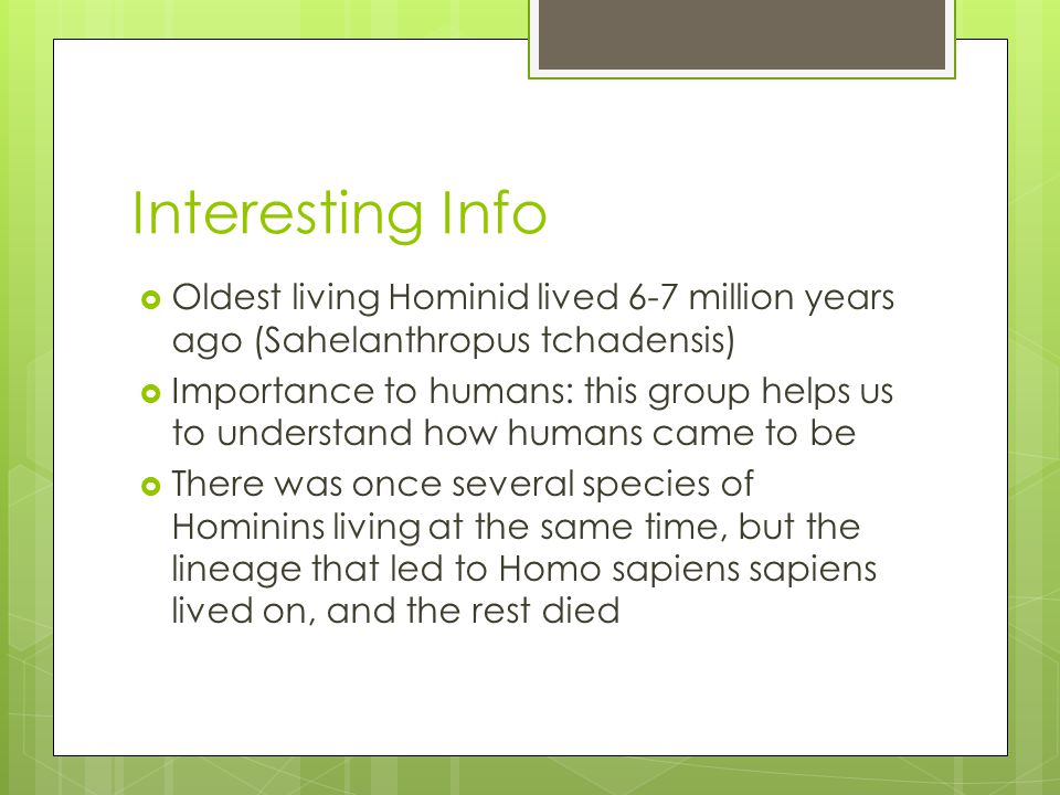 Interesting Info  Oldest living Hominid lived 6-7 million years ago (Sahelanthropus tchadensis)  Importance to humans: this group helps us to understand how humans came to be  There was once several species of Hominins living at the same time, but the lineage that led to Homo sapiens sapiens lived on, and the rest died