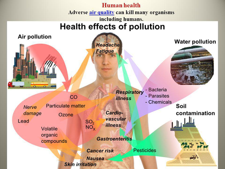 Human health Adverse air quality can kill many organisms including humans.air quality