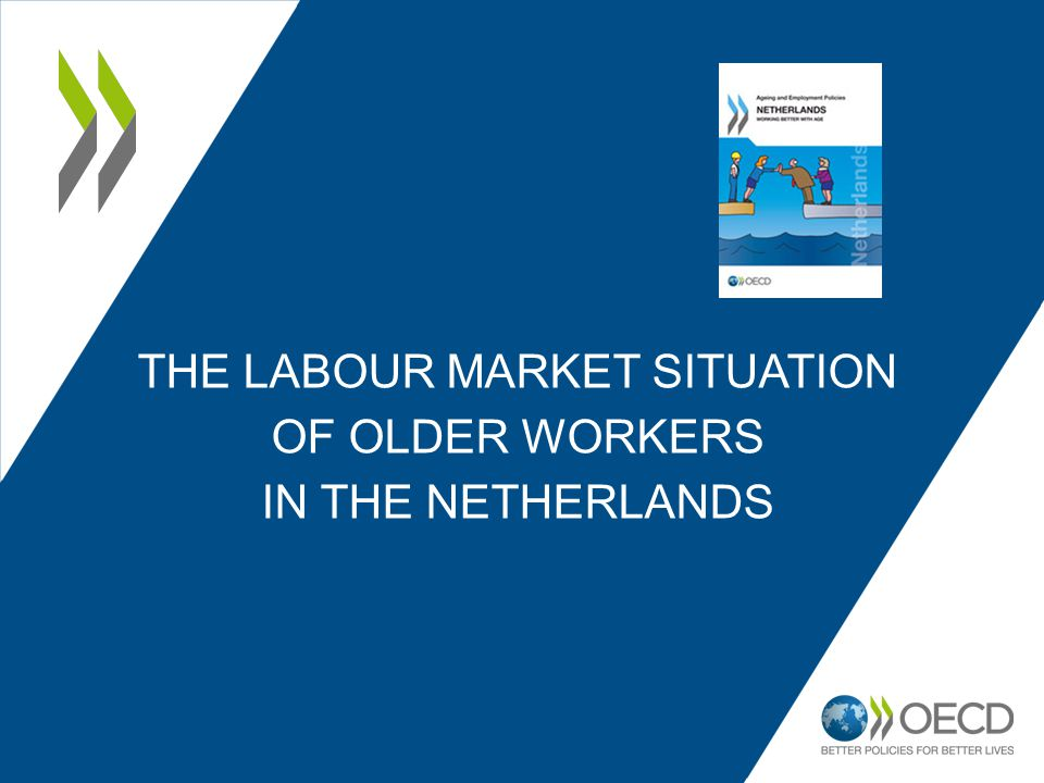 THE LABOUR MARKET SITUATION OF OLDER WORKERS IN THE NETHERLANDS