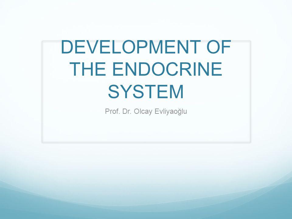 DEVELOPMENT OF THE ENDOCRINE SYSTEM Prof. Dr. Olcay Evliyaoğlu