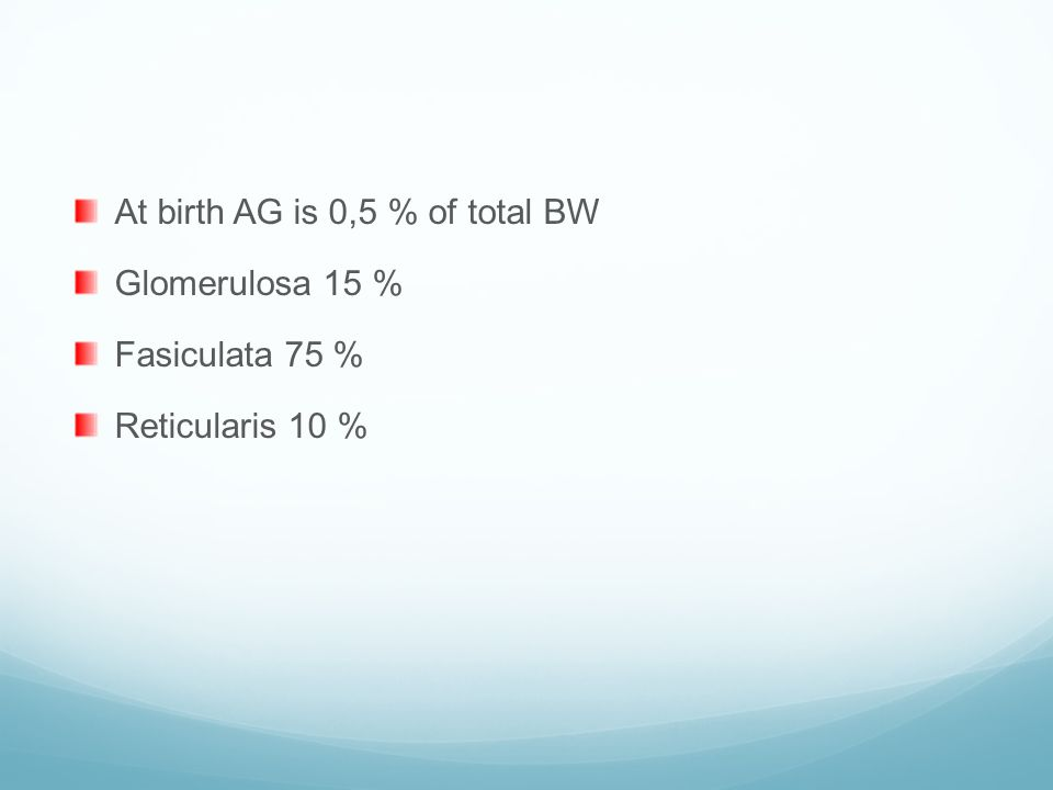 At birth AG is 0,5 % of total BW Glomerulosa 15 % Fasiculata 75 % Reticularis 10 %