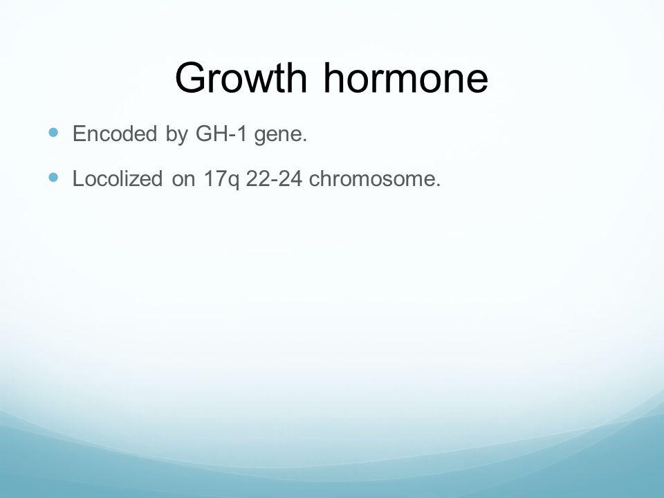Growth hormone  Encoded by GH-1 gene.  Locolized on 17q 22-24 chromosome.