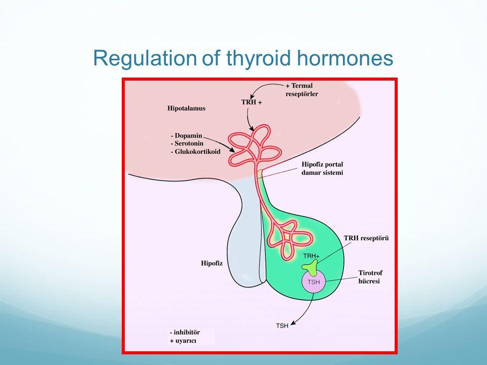 Regulation of thyroid hormones
