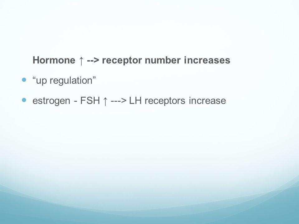 "Hormone ↑ --> receptor number increases  ""up regulation""  estrogen - FSH ↑ ---> LH receptors increase"