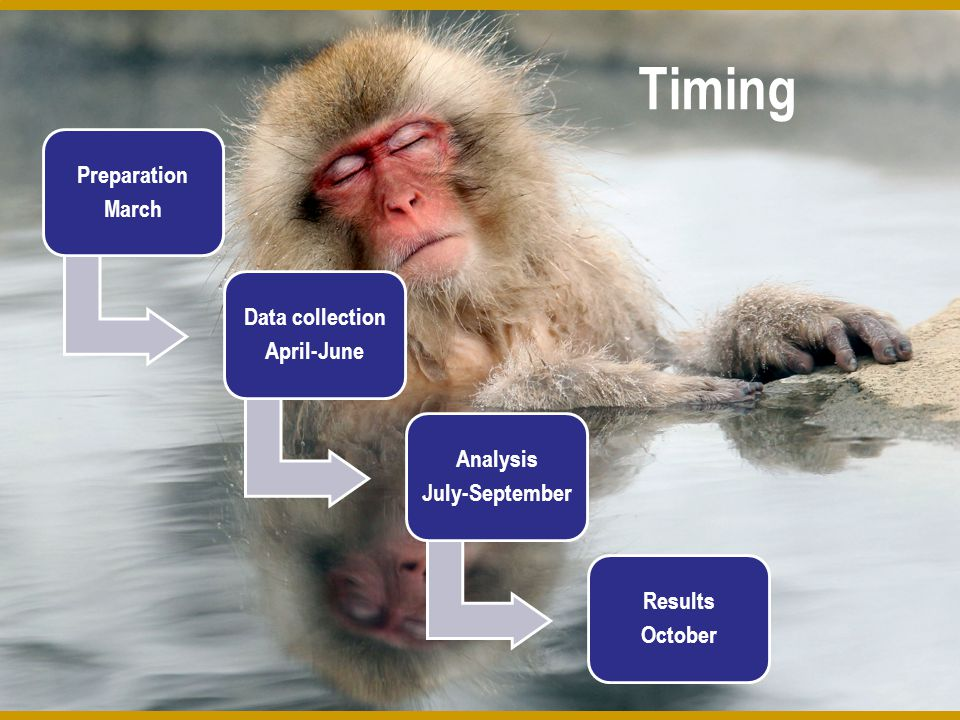 Timing Preparation March Data collection April-June Analysis July-September Results October