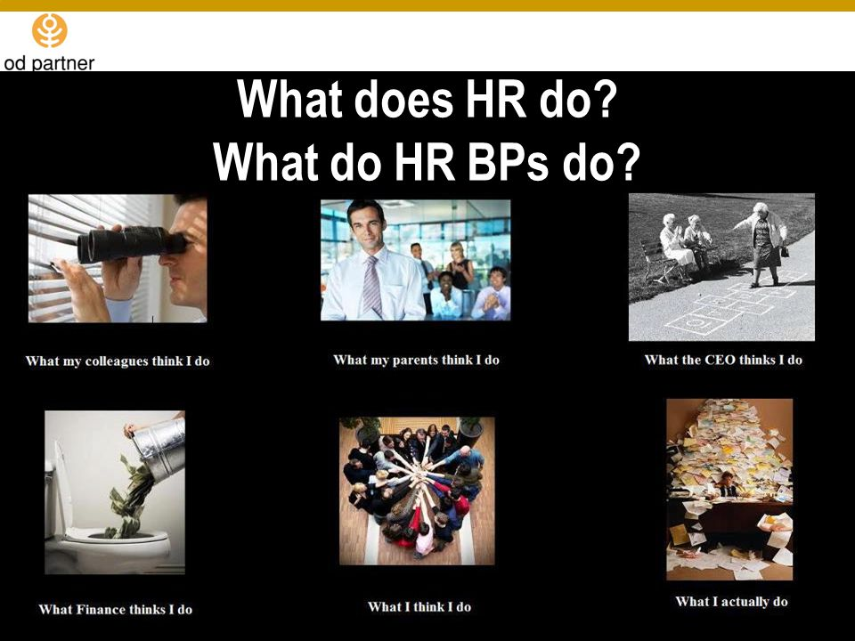 What does HR do? What do HR BPs do?