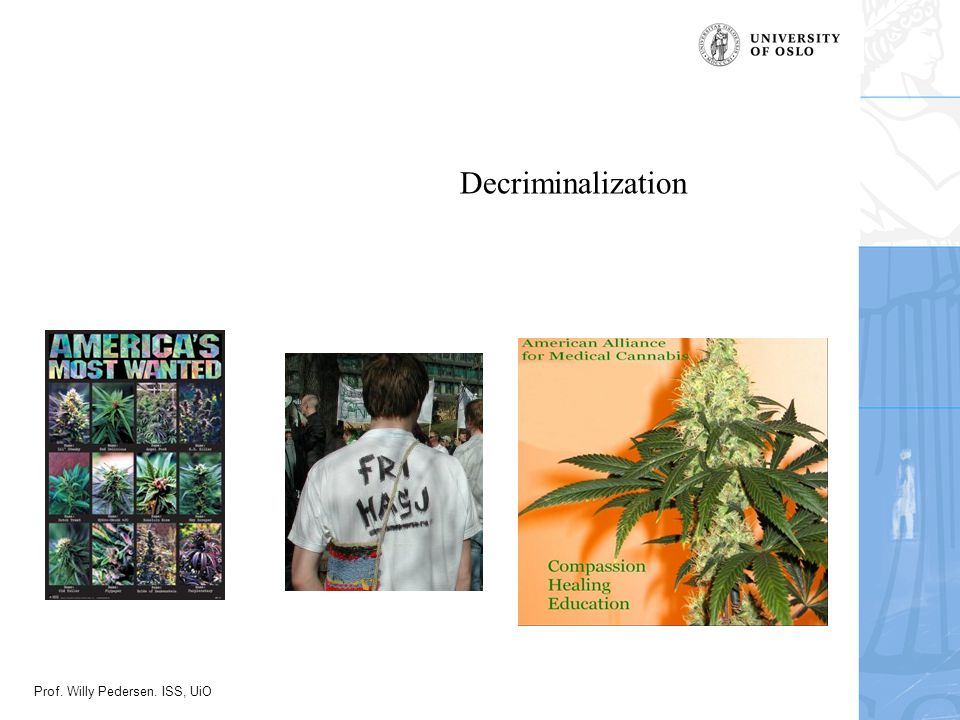Prof. Willy Pedersen. ISS, UiO Decriminalization