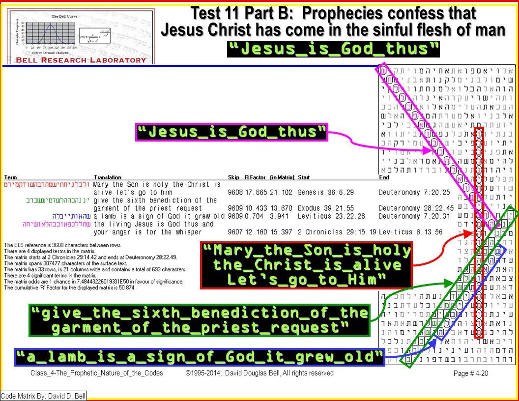 Test 11 Part B: Prophecies confess that Jesus Christ has come in the sinful flesh of man Jesus_is_God_thus Code Matrix By: David D.