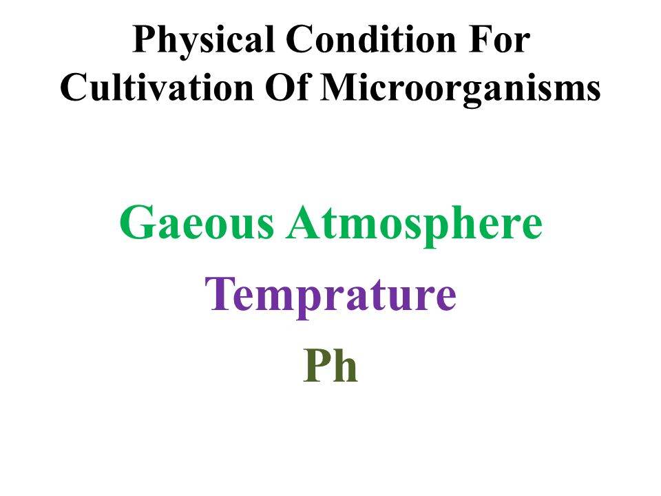 Physical Condition For Cultivation Of Microorganisms Gaeous Atmosphere Temprature Ph