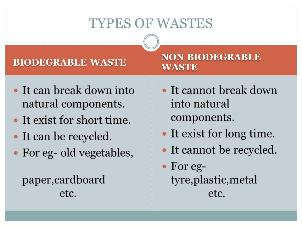 cardboard biodegradable or nonbiodegradable