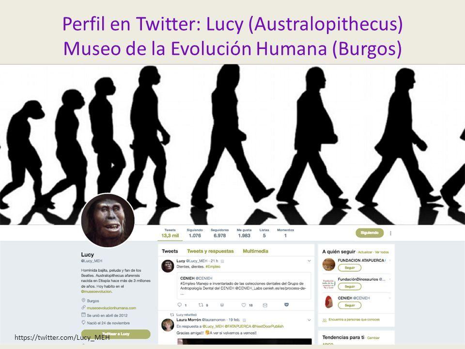 Perfil en Twitter: Lucy (Australopithecus) Museo de la Evolución Humana (Burgos) https://twitter.com/Lucy_MEH