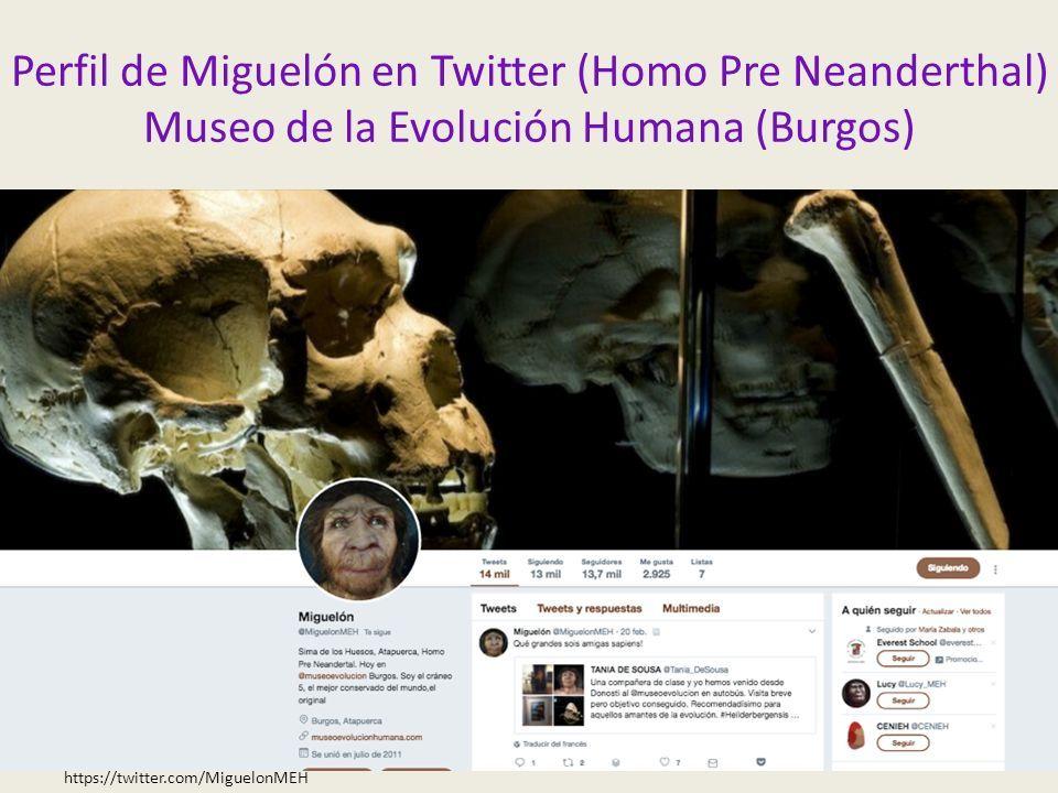 Perfil de Miguelón en Twitter (Homo Pre Neanderthal) Museo de la Evolución Humana (Burgos) https://twitter.com/MiguelonMEH