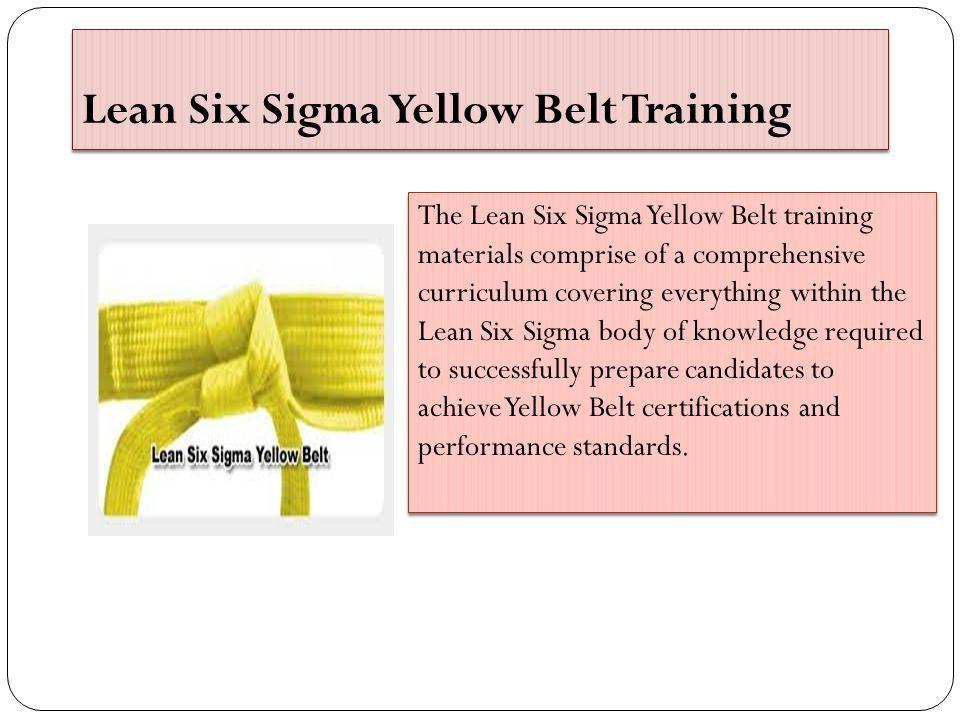 Lean Six Sigma Training In Australia Ppt Download
