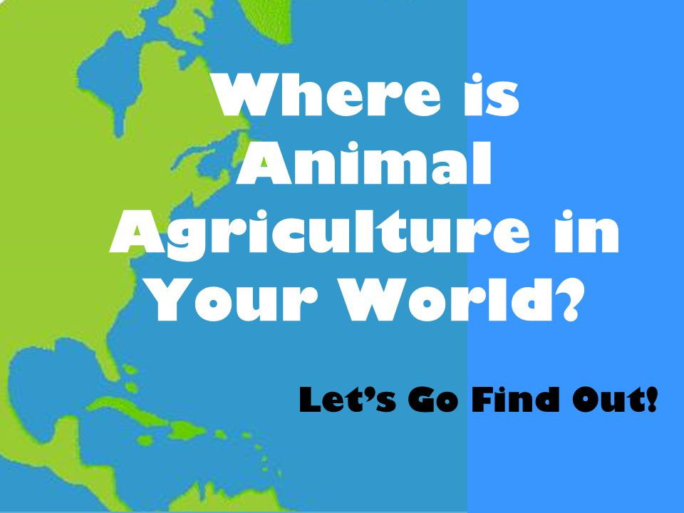 Where is Animal Agriculture in Your World Let's Go Find Out!