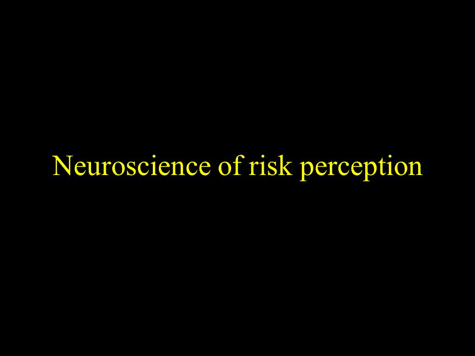 Neuroscience of risk perception