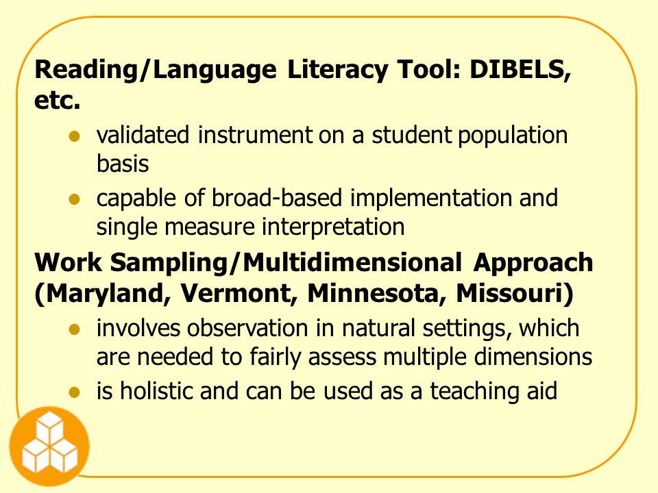 Reading/Language Literacy Tool: DIBELS, etc.