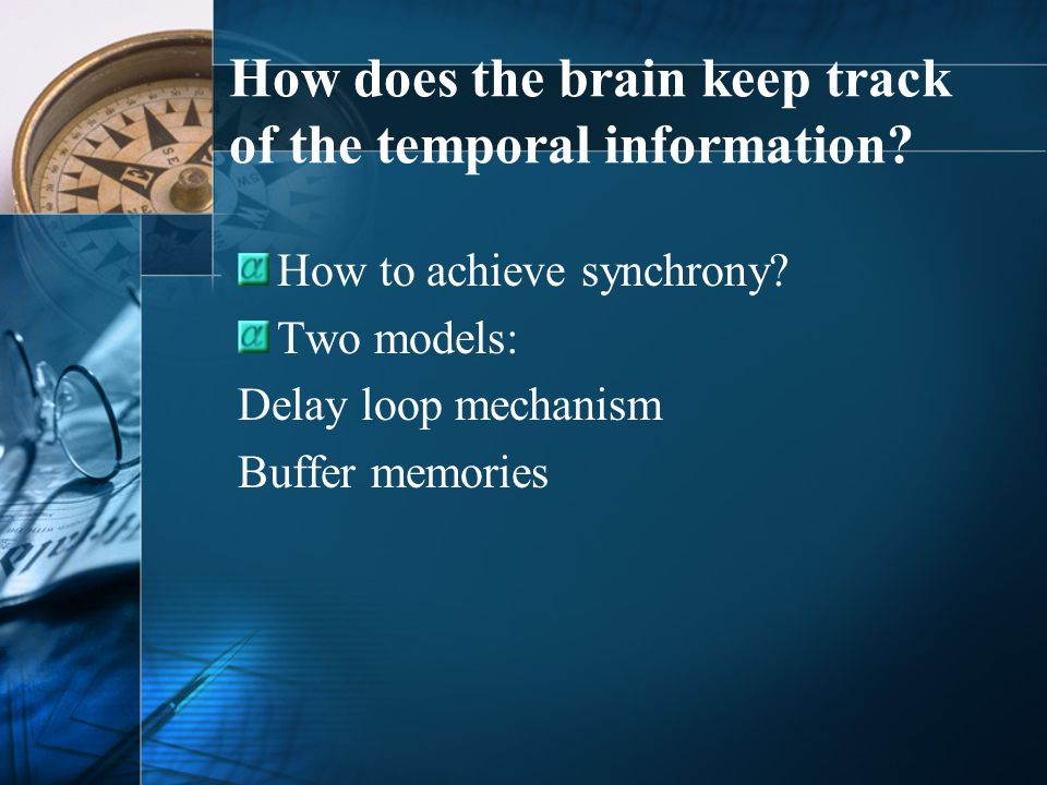 1.Information travels from the skin up to the relevant sensory area of cortex.