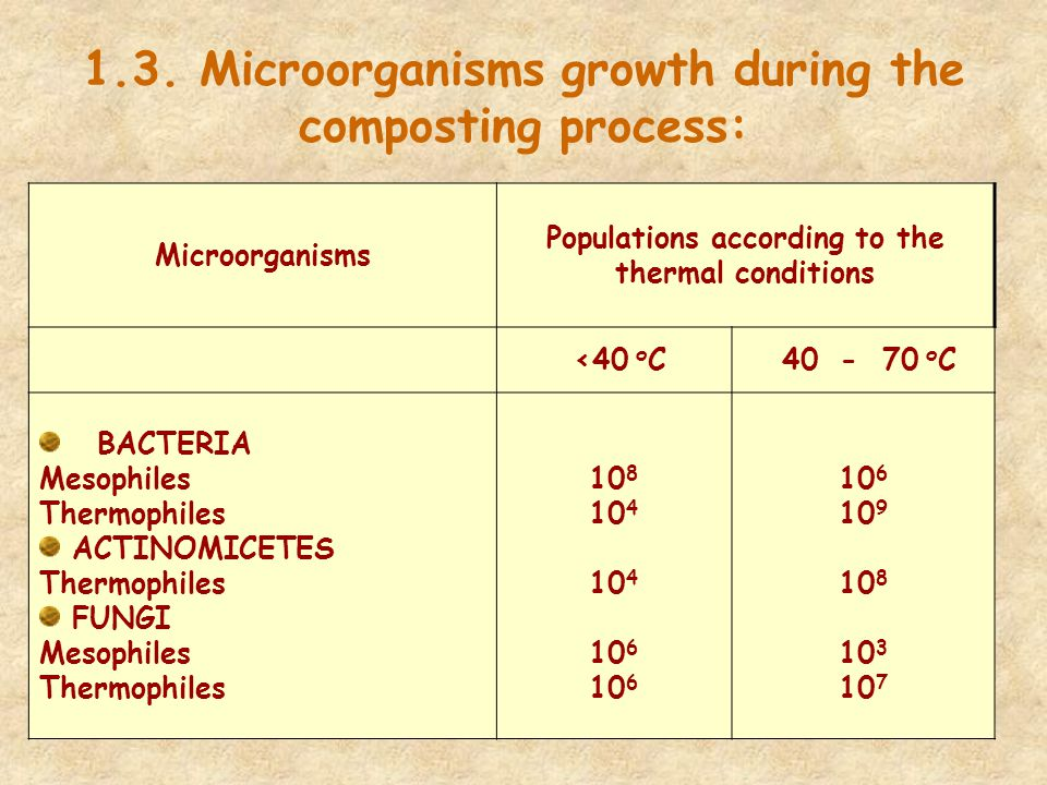 1.3. Microorganisms growth during the composting process: Microorganisms Populations according to the thermal conditions <40 о С 40 - 70 о С BACTERIA