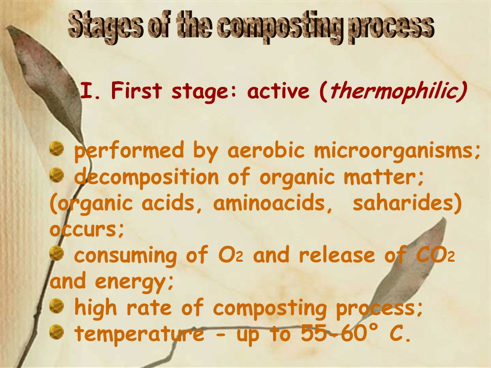 performed by aerobic microorganisms; decomposition of organic matter; (organic acids, aminoacids, saharides) occurs; consuming of O 2 and release of CO 2 and energy; high rate of composting process; temperature - up to 55-60° С.