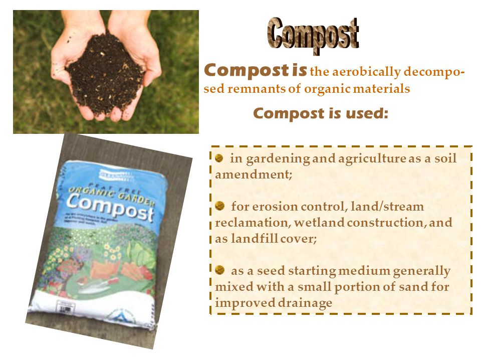 Compost is the aerobically decompo- sed remnants of organic materials in gardening and agriculture as a soil amendment; for erosion control, land/stream reclamation, wetland construction, and as landfill cover; as a seed starting medium generally mixed with a small portion of sand for improved drainage Compost is used: