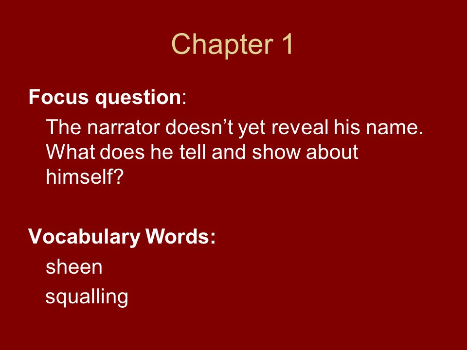 Chapter 1 Focus question: The narrator doesn't yet reveal his name. What does he tell and show about himself? Vocabulary Words: sheen squalling