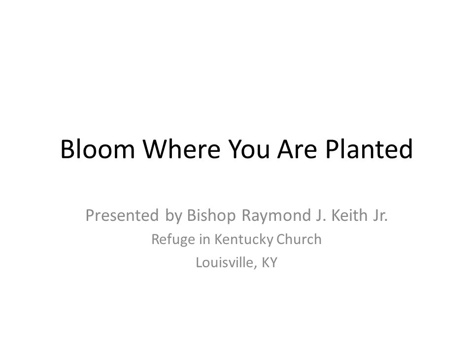 Bloom Where You Are Planted Presented by Bishop Raymond J. Keith Jr. Refuge in Kentucky Church Louisville, KY