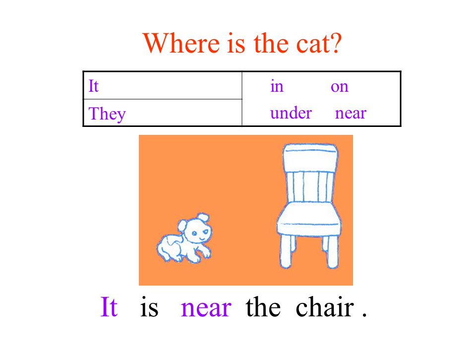 Where is the cat It in on under near They It is near the chair.
