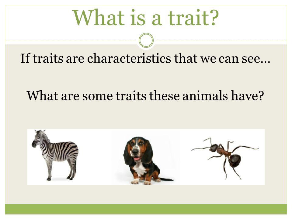 Identify some inherited traits: