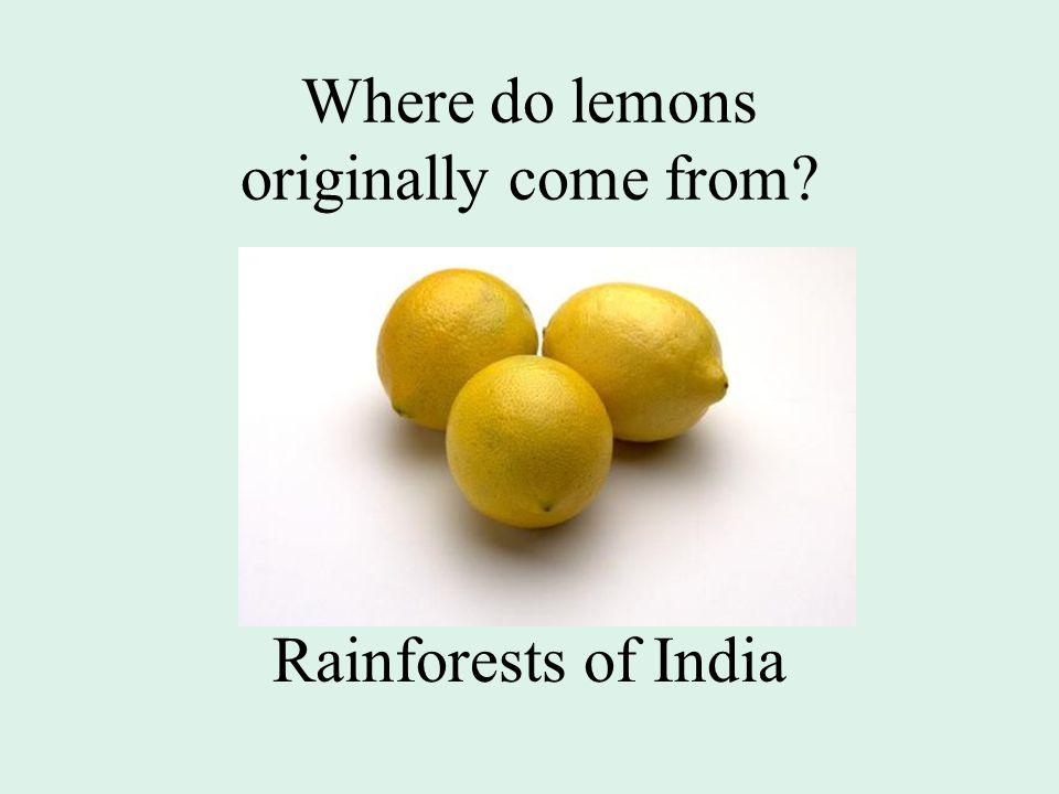 Where do lemons originally come from Rainforests of India