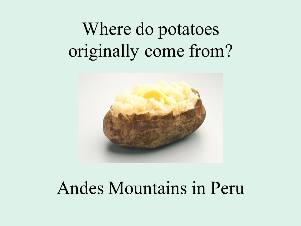 Where do potatoes originally come from Andes Mountains in Peru