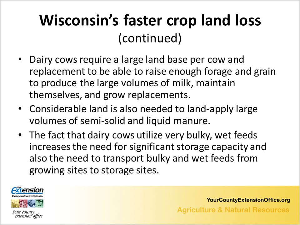 Wisconsin's faster crop land loss (continued) Dairy cows require a large land base per cow and replacement to be able to raise enough forage and grain to produce the large volumes of milk, maintain themselves, and grow replacements.
