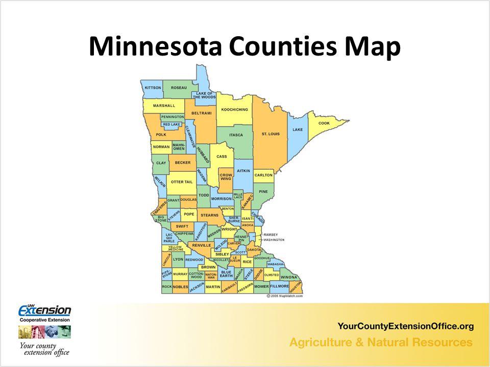 Minnesota Counties Map