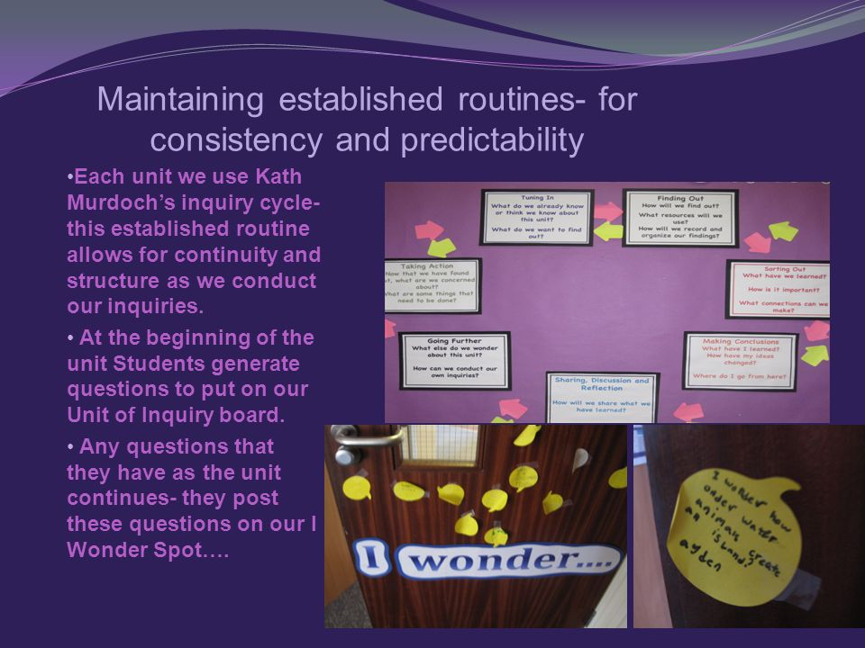 Maintaining established routines- for consistency and predictability Each unit we use Kath Murdoch's inquiry cycle- this established routine allows for continuity and structure as we conduct our inquiries.