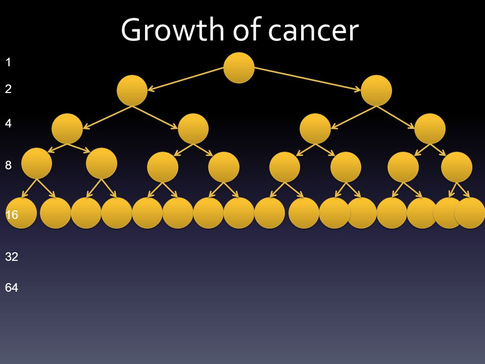 Growth of cancer 1 2 4 8 16 32 64